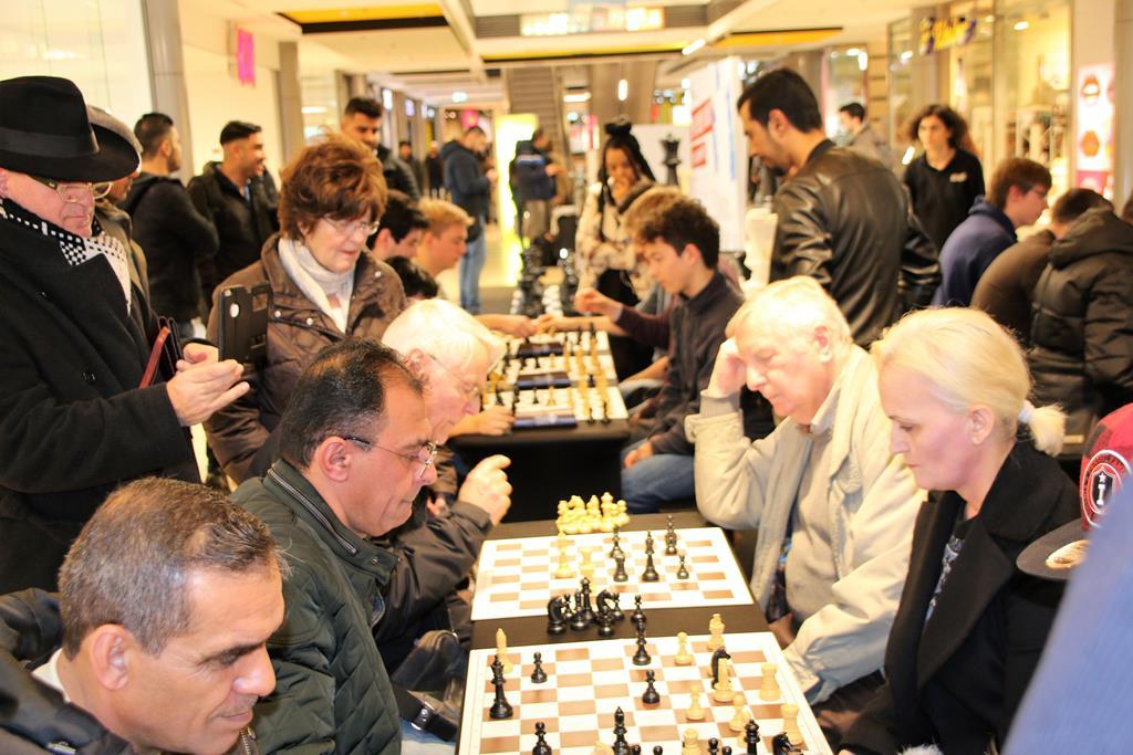 faszination schach in heidelberg chessbase. Black Bedroom Furniture Sets. Home Design Ideas