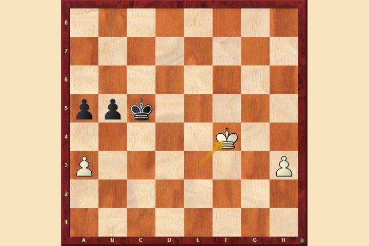 Konig Gegen Raketenbauern Chessbase